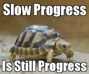 Turtle: Slow Progress Is Still Progress